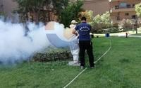 西安消杀公司认为夏季如何消灭蚊蝇?
