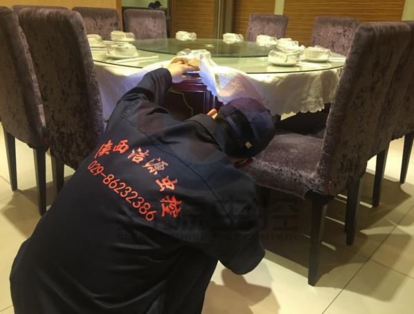 餐厅灭蟑螂公司