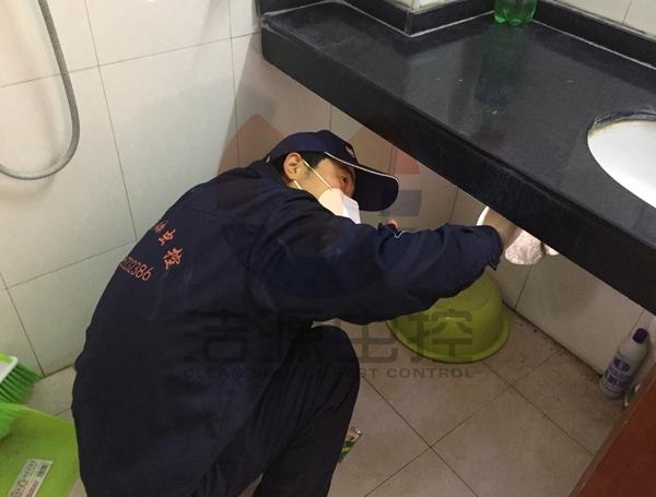 卫生间灭蟑螂